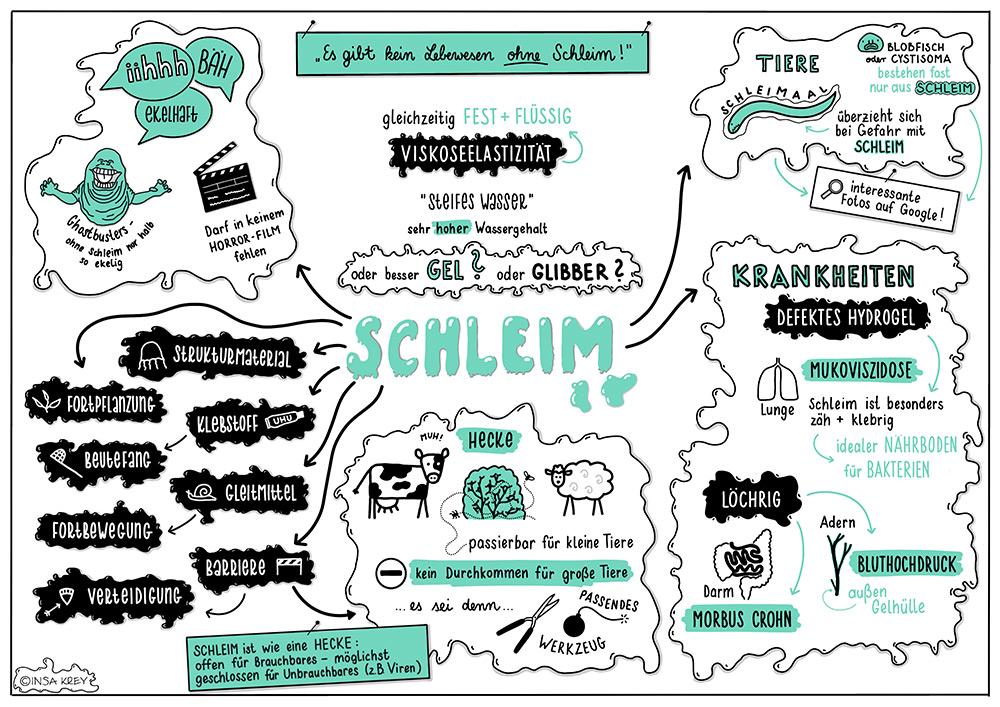 Sketchnote über Schleim (Das Buch vom Schleim)
